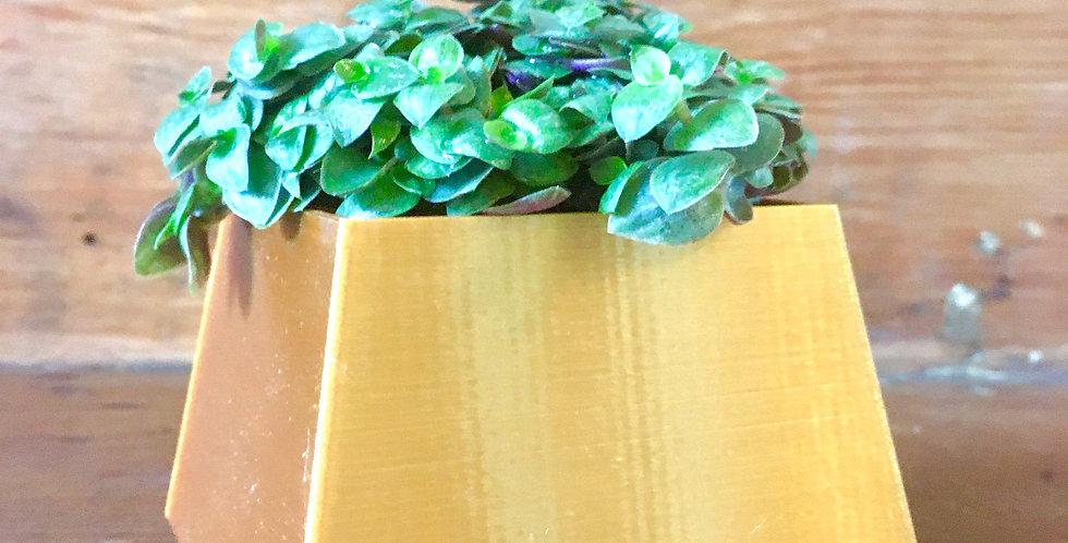 5cm gold square pot