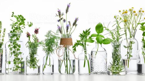 L'aromathérapie au service de l'EFT