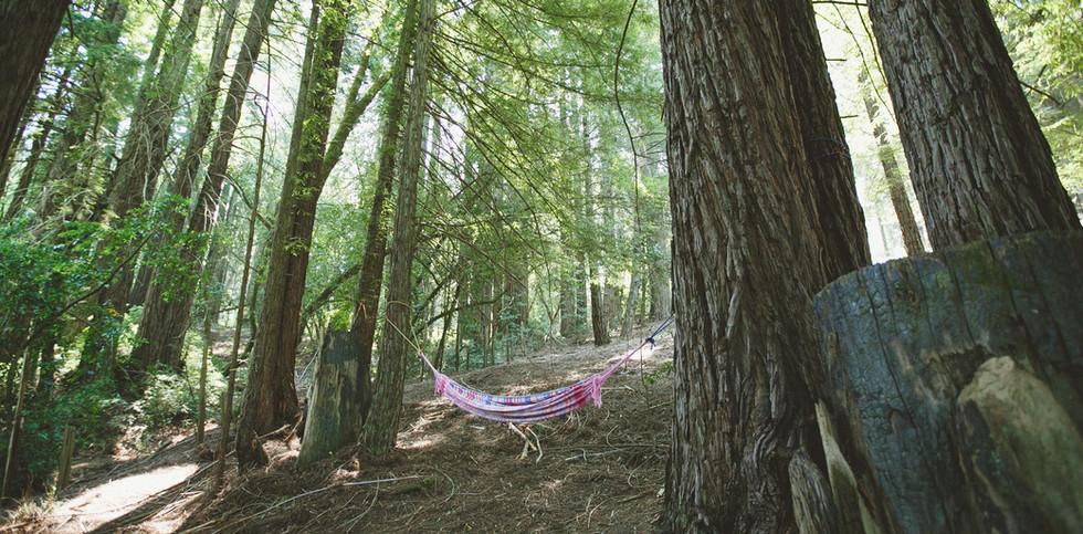 [AKSandhu]_Shanti_Campsites_03.jpg