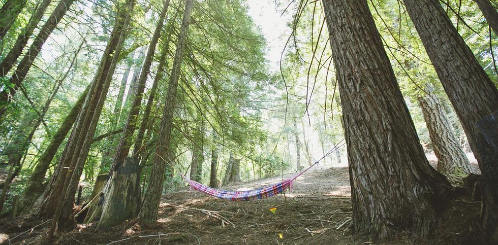 [AKSandhu]_Shanti_Campsites_12.jpg
