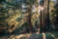 [AKSandhu]_Shanti_WEB_21.jpg