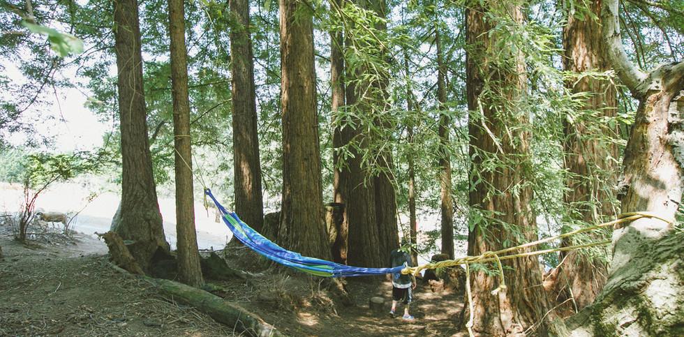 [AKSandhu]_Shanti_Campsites_06.jpg