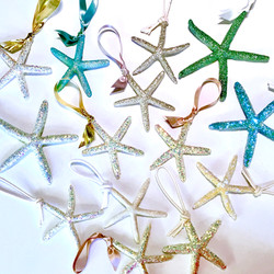 assorted sea star ornaments