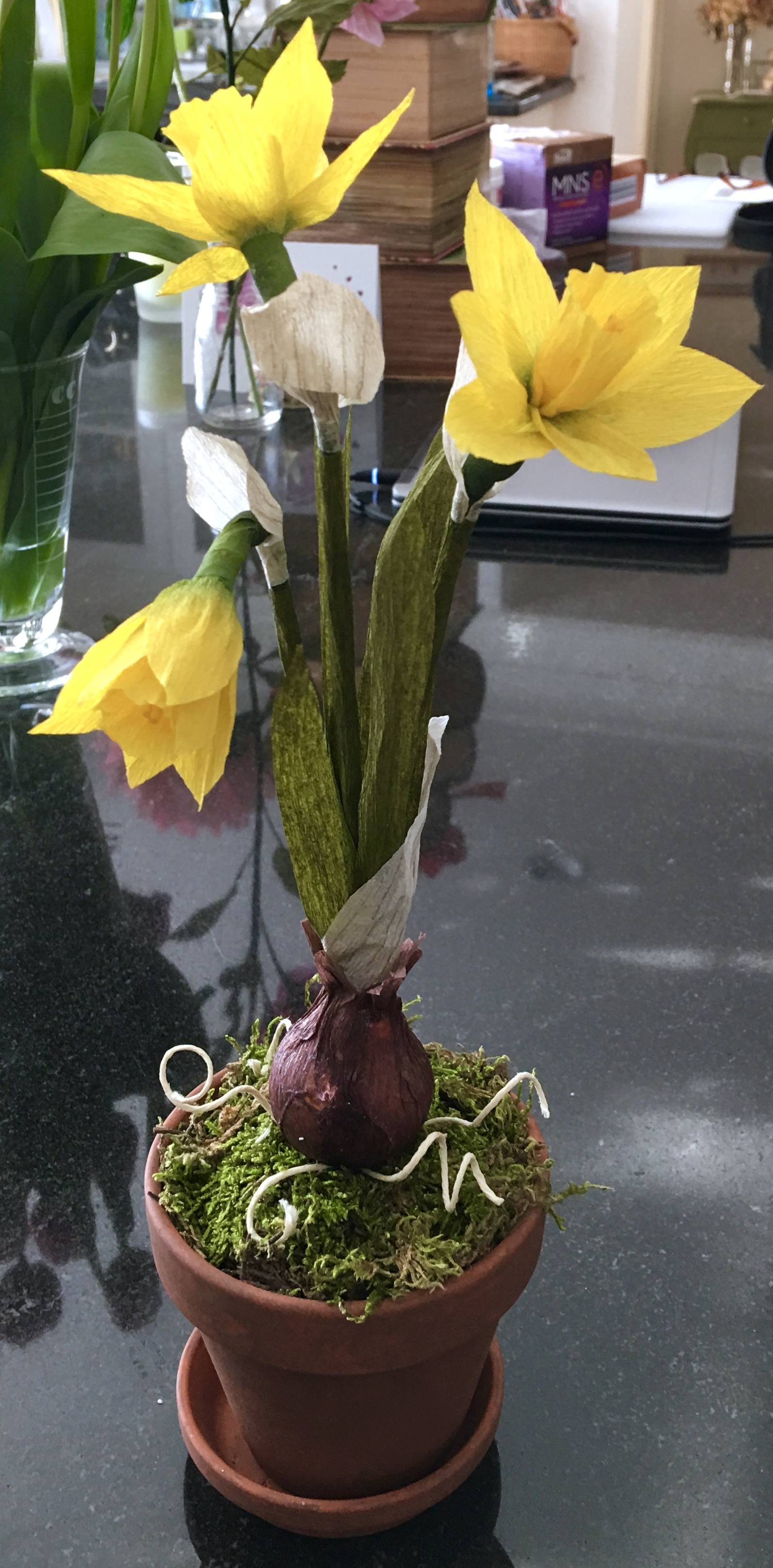 paper botanical daffodil