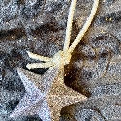 glittered 3-D star on silver rope
