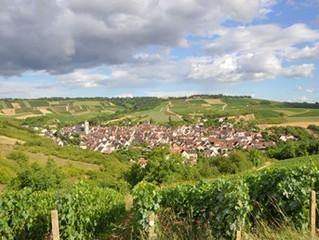Rode Bourgogne uit Yonne