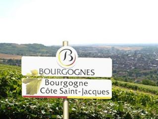 Witte Bourgognes met een verhaal