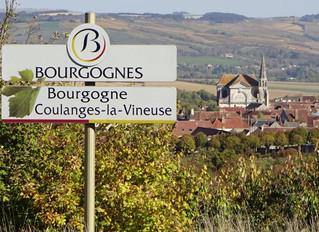 De wijnen van Stéphanie
