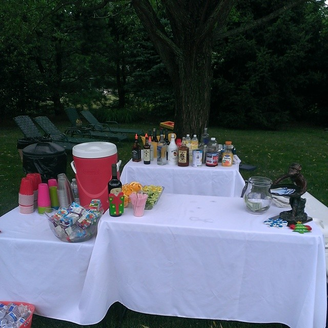 Back Yard Birthday party in Jackson
