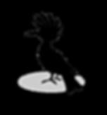 hoopoe-bird-black-silhouette _ corrected