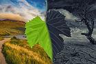 klimaschutz-1575521583isy.jpg