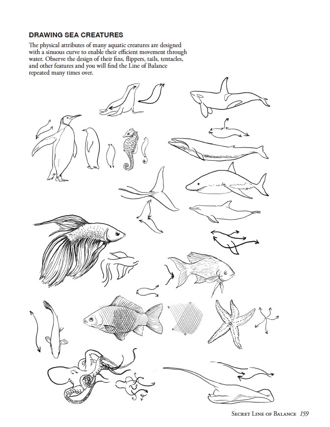 Line of Balance Sea Creatures