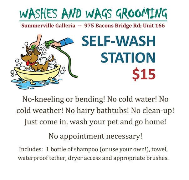 Self-wash.jpg