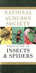 Insects & Spiders.jpg