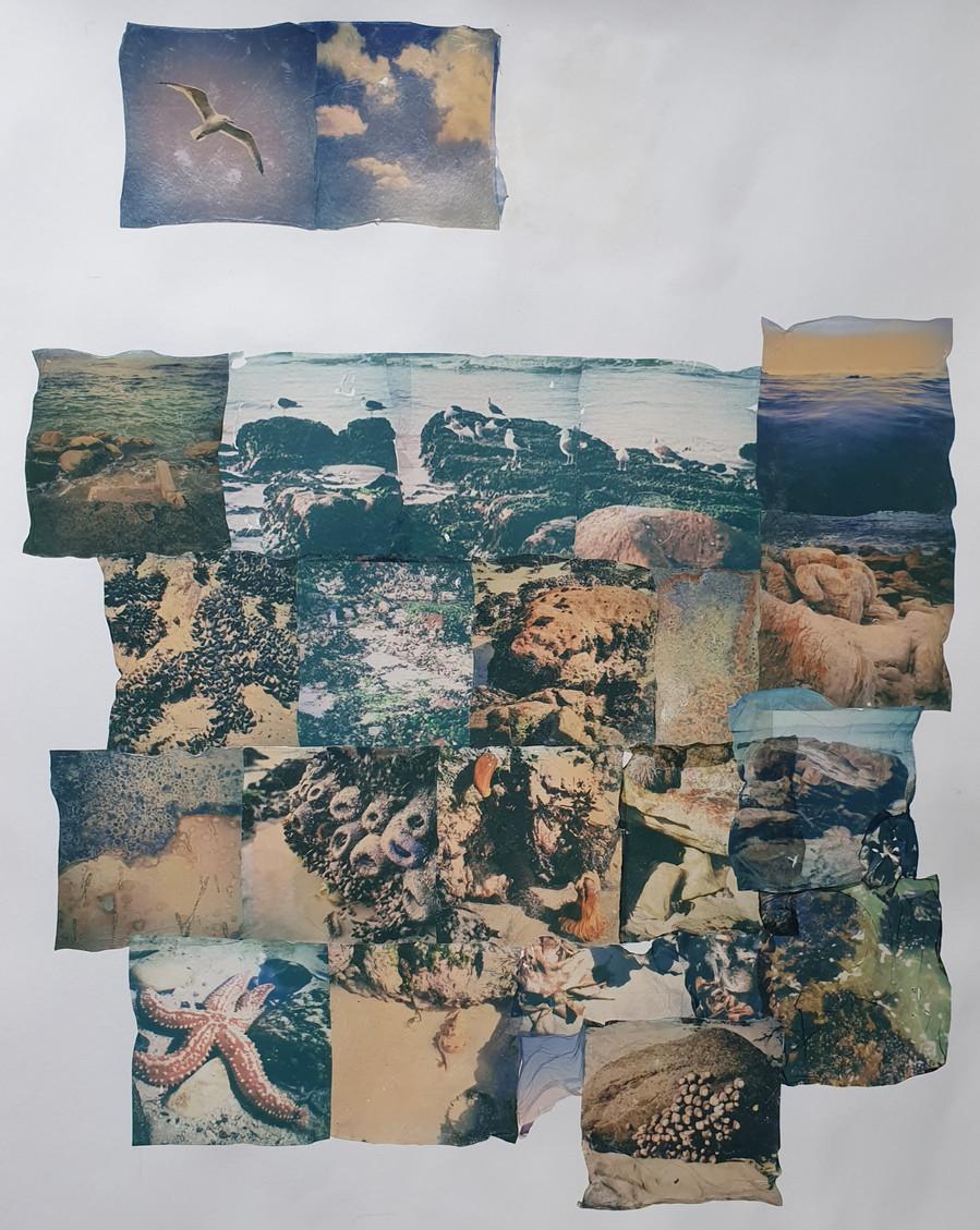 'A Seascape Imagined', 2020