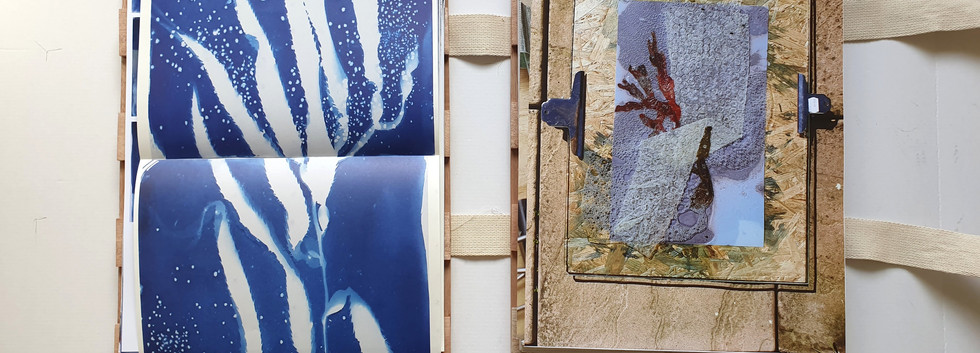 This is a test for the Herbarium Press inspired catalogue pertaining to the practical component of my project. The loose pages each contain labels and information regarding the contents of each page, allowing for pages to be re-arranged and 'jumbled', resulting in a possibly different viewing experience with each reading. The pages can also be layed out upon a table or floor and viewed to the reader's liking, encouraging readers to arrange and make individual connections between pages. The papers used in the final will reference both the papers used in the artworks within this project, as well as the papers that are used for pressings specimens in a herbarium press, such as thick blotting papers, cardboard and newsprint.