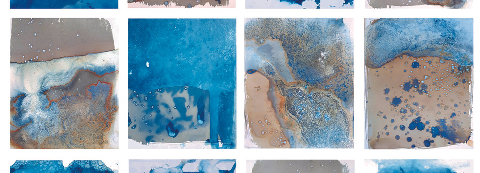 Field Notes: Submerged and Exposed.2019-2020