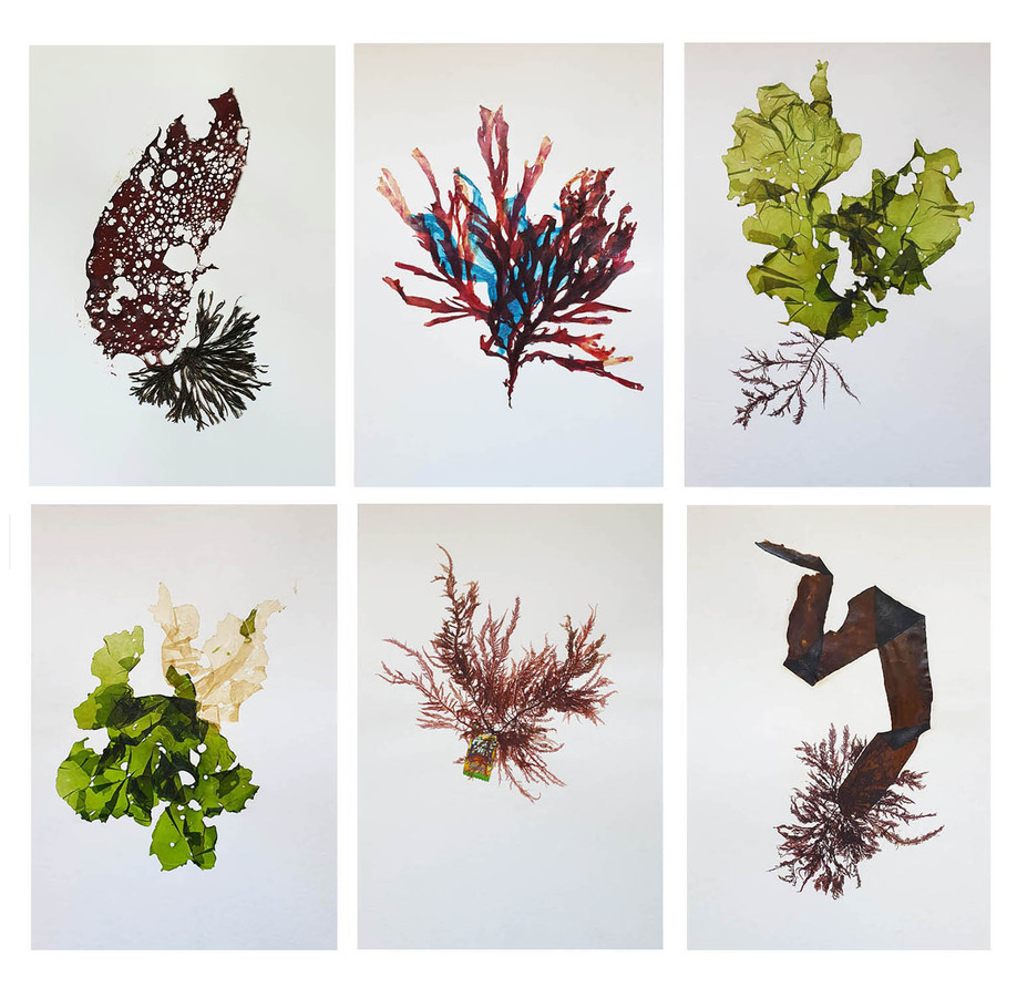 'Organic and Synthetic: Pressings', 2019 - 2020