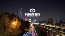 Pumatronix, Solución profesional de lectura de patentes y containers