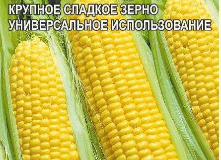 Кукуруза Сластена/Сем Алт