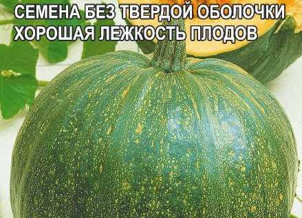 Тыква Голосемянная/Сем Алт