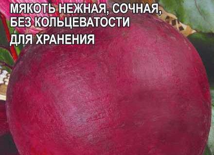 Свекла Мулатка/Сем Алт