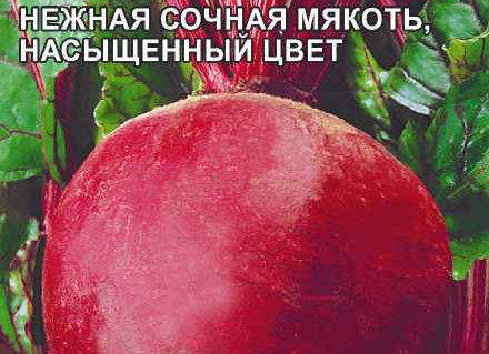 Свекла Русский Борщ F1/Сем Алт