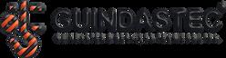 logo_Guindastec.png
