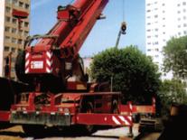 TEREX DEMAG AC – 75/30