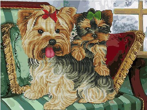 Pictura pe numere Mix combinata cu mozaic cu diamante ACK08 40*50 cm