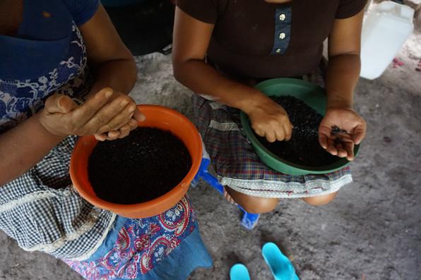 Frijoles negros todos los días, parte de una dieta nutritiva en el campamento.