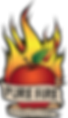 PURE-FIRE-logo-small.png