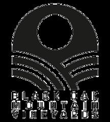 black oak logo.png
