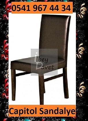 Siyah Deri Sandalye Kiralama