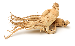Ginseng-Benefits-to-Health-1024x633.png
