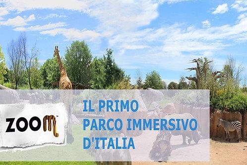 Zoom Torino + Piscina