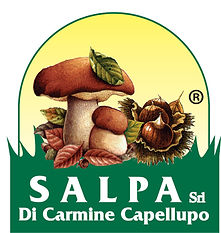 marchio Salpa.jpg