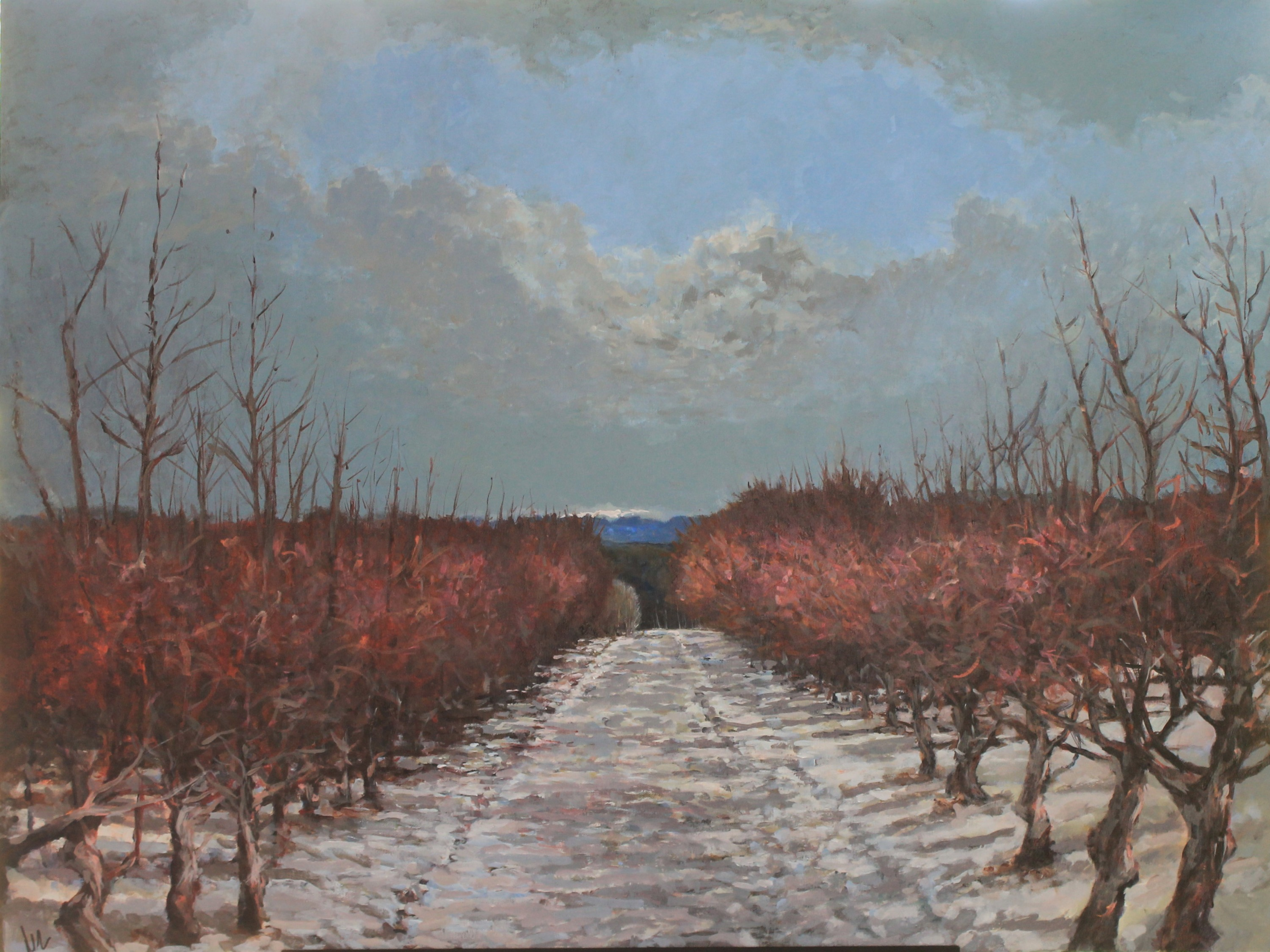 Orchard in Spring SOLD