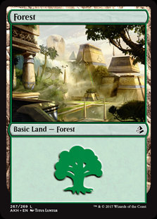 MAGIC THE GATHERING AMONKHET Card - 267/269 : Forest
