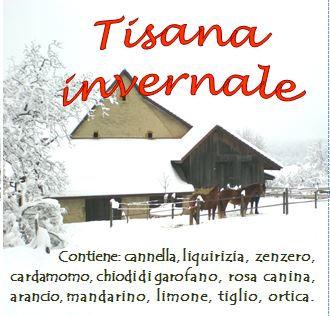 Tisana invernale
