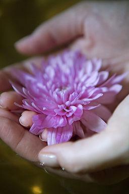 Flor en la mano