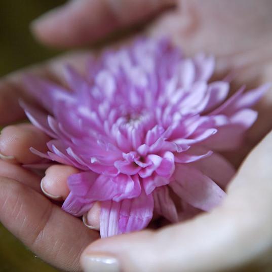 Hand Çiçek