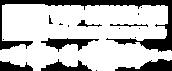 logo vst news ru.png