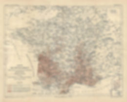 présence du phylloxera en France en 1882