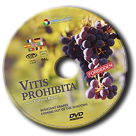 Vitis Prohibita - INTERNATIONAL - ROND D