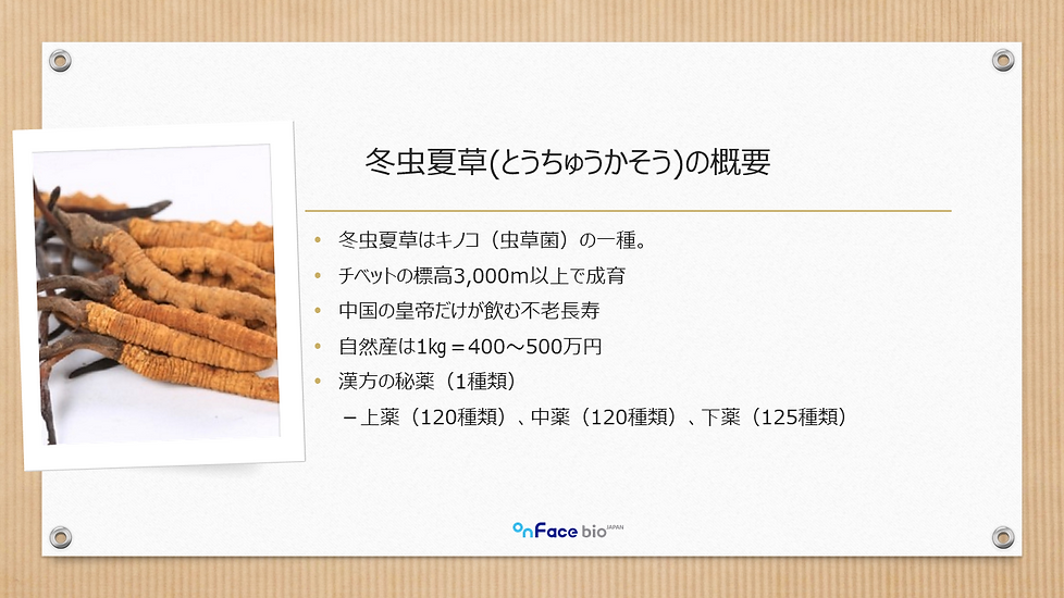 冬虫夏草10001.png