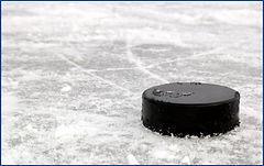 NHL Koozies