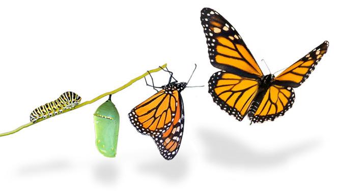 Create lasting change