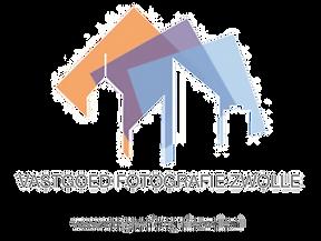 logo-trans-vfz.png