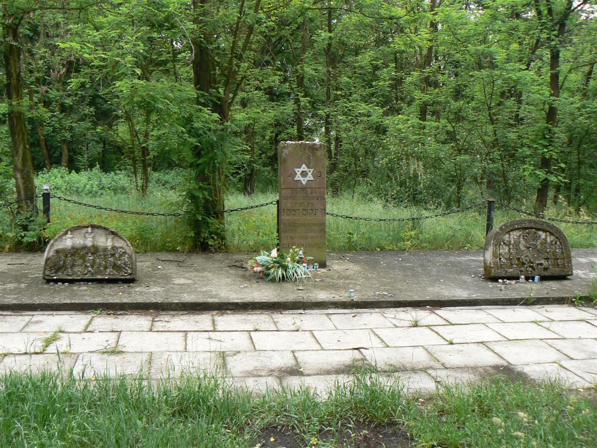 the common brothers grave קבר האחים לקורבנות הפוגרום.jpg